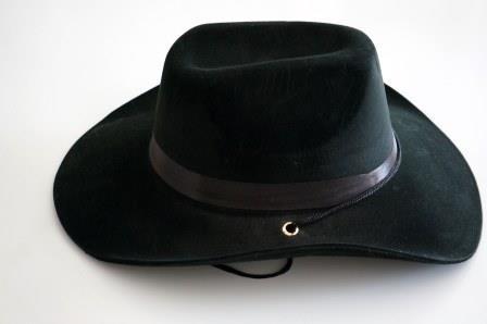 Шляпа мужская бархатная
