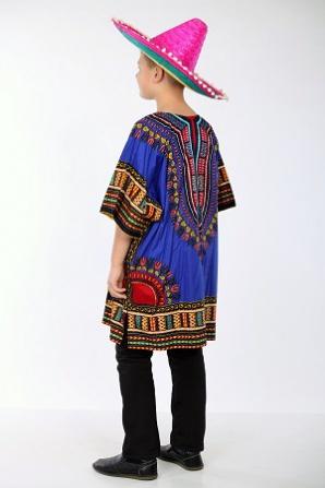 Мексиканец синяя блуза